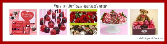 Shari's Berries Valentines Treats TechSavvyMama.com