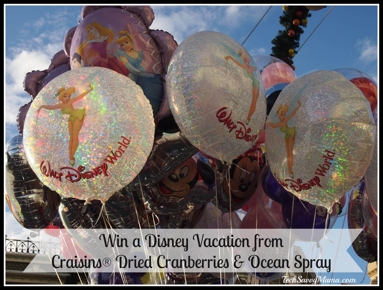 Win a Disney Vacation from Craisins® Dried Cranberries & Ocean Spray {sponsored}