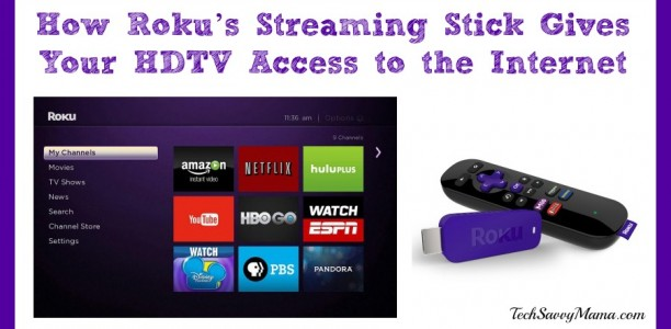Roku's Streaming Stick Gives Your HDTV Access to the Internet