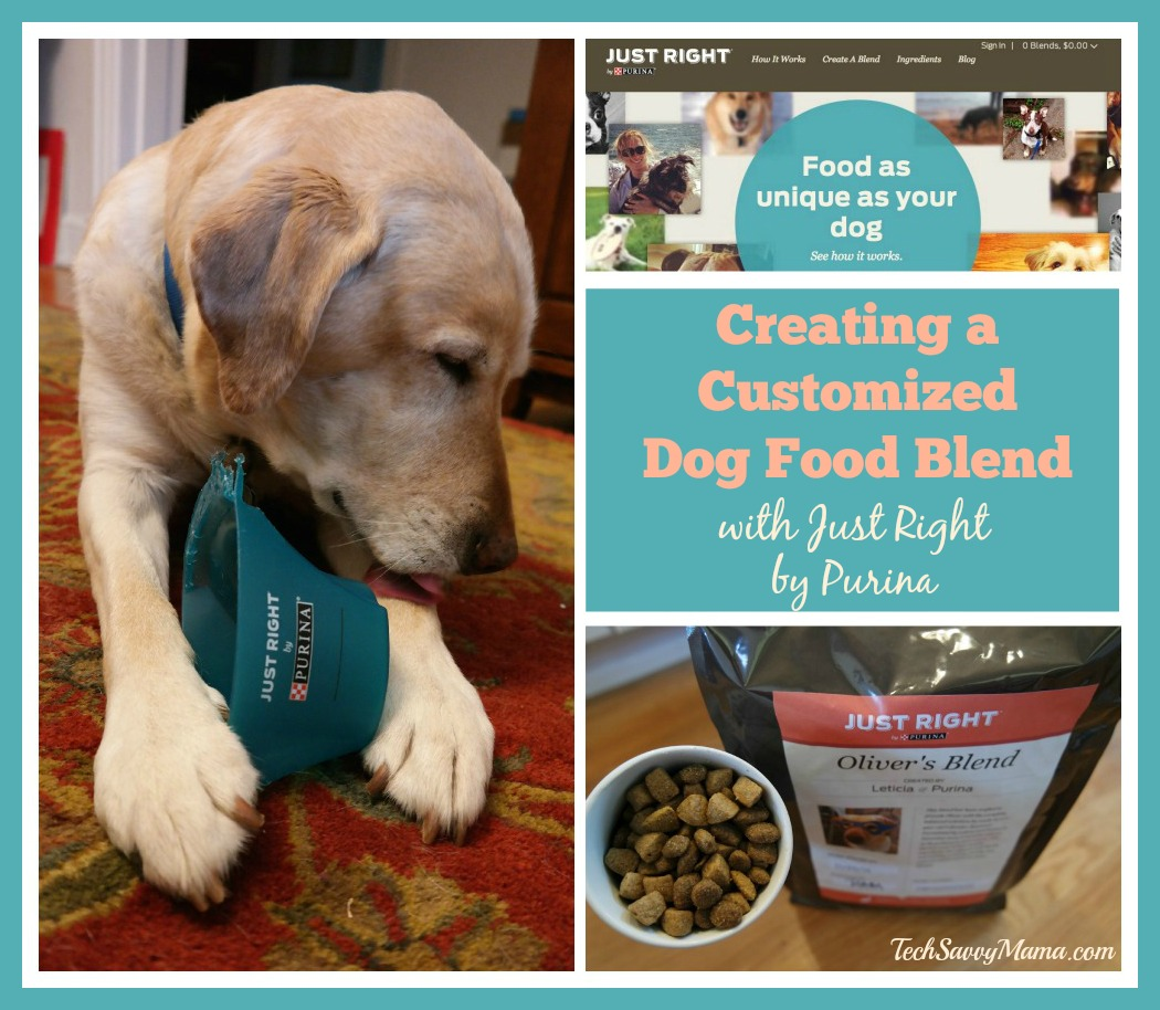 Creating a Customized Dog Food Blend for Oliver with Just Right By Purina