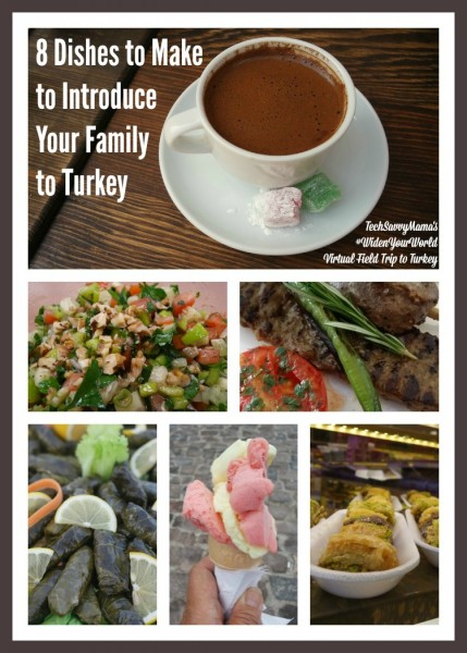 8 Turkish Dishes to Make to Introduce Your Family to Turkey. Recipes for family favorites on TechSavvyMama.com