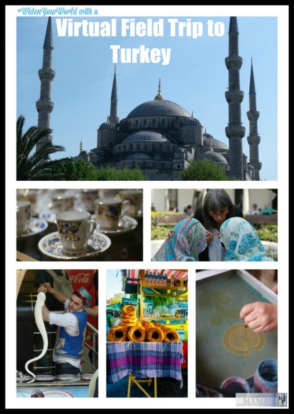 While nothing is quite the same as being in Istanbul and other cities in Turkey, virtual field trips are powerful way to teach kids other cultures in places around the world. Join TechSavvyMama.com on a global learning adventure.
