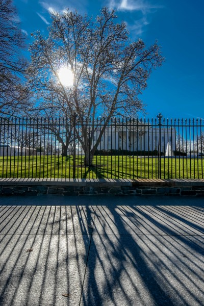A brilliant blue sky and warm sun illuminate the grounds of the White House on a rare warm winter day © 2014, Leticia Barr All Rights Reserved