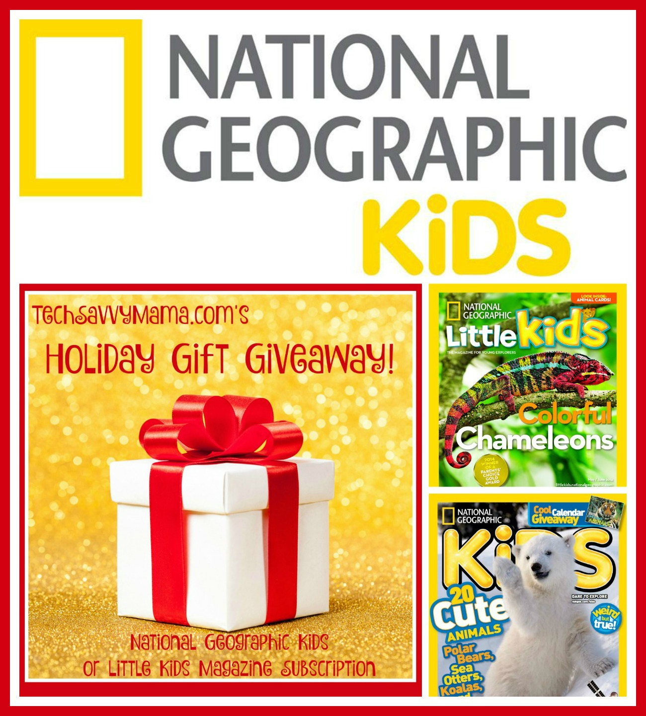 GIVEAWAY: National Geographic Kids or Little Kids Magazine Subscription
