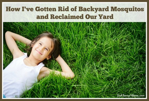 How to rid your backyard of mosquitoes 28 images take Ways to get rid of mosquitoes in your house
