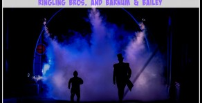 4 Things I Learned When I Ran Away and Joined Ringling Bros. for Out of This World