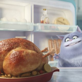 What Does Your Pet Do When You're Away? The Secret Life of Pets DVD & Blu-ray Release Dates