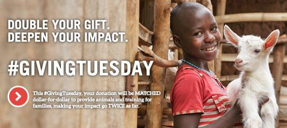 Heifer International Giving Tuesday Matching Donations