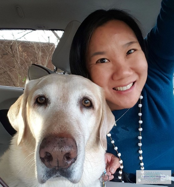 How Our Long Search for a Labrador Led to Love in a Forever Home on TechSavvyMama.com